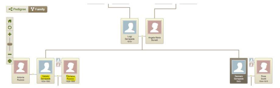 7b-Gennaro and Rosa chart