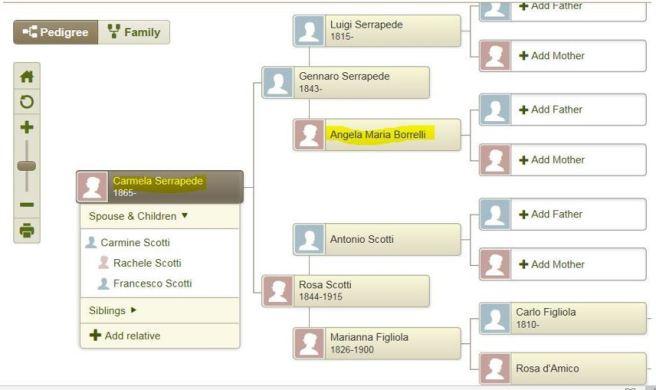 7f-Carmela pedigree chart