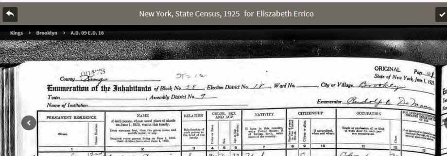 44-192520nys20census20errico-headers_zpsdffchrtz