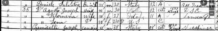 48-1925 NYS Census D'Agosto entry