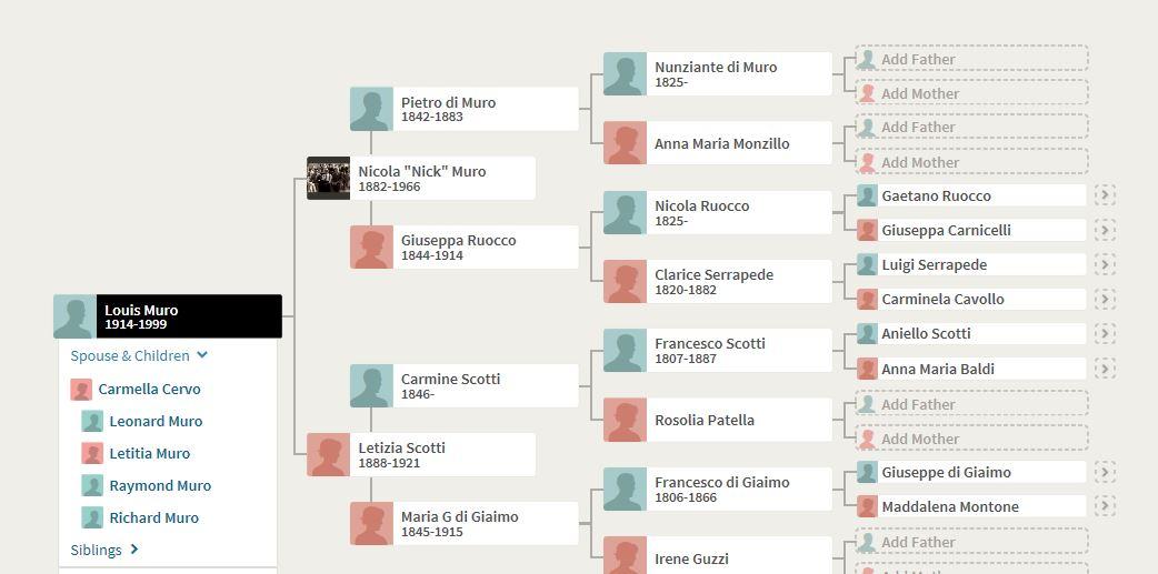 63-Louis Muro Pedigree Chart